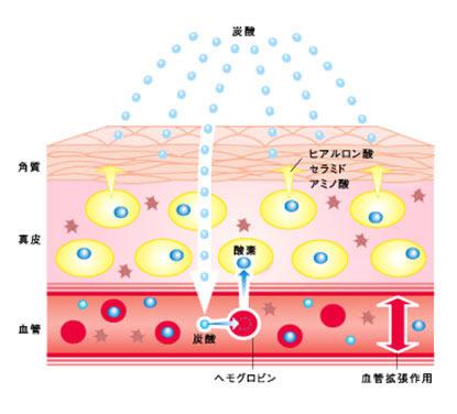 炭酸ガス療法のメカニズム